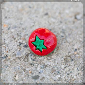 bouton tomato BO5