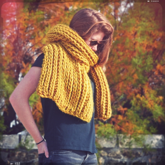 kit tricot echarpe homme